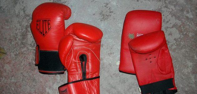 Boxeo Júnior